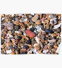 Wet Rocks - Mon Repos Beach - Bundaberg Poster