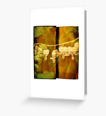 Spring .. Chapter and Verse  Greeting Card