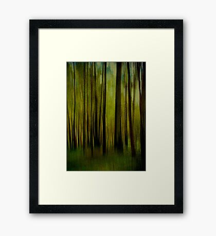 Night falls on the Forest Framed Print