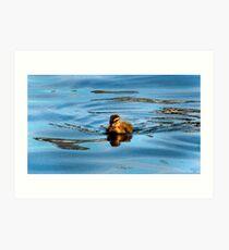 Quack me up Art Print