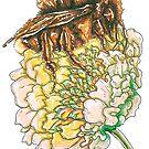 Honey Bee on a Shamrock Flower by aidadaism