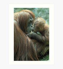 Tender Love of an Orangutan Art Print