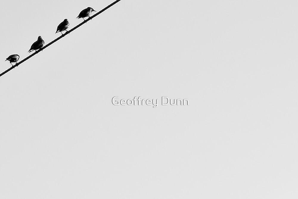 ...occupied... by Geoffrey Dunn