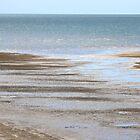 Take me to the sea II by Kathie Nichols