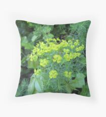 Along a Good Red Road Throw Pillow