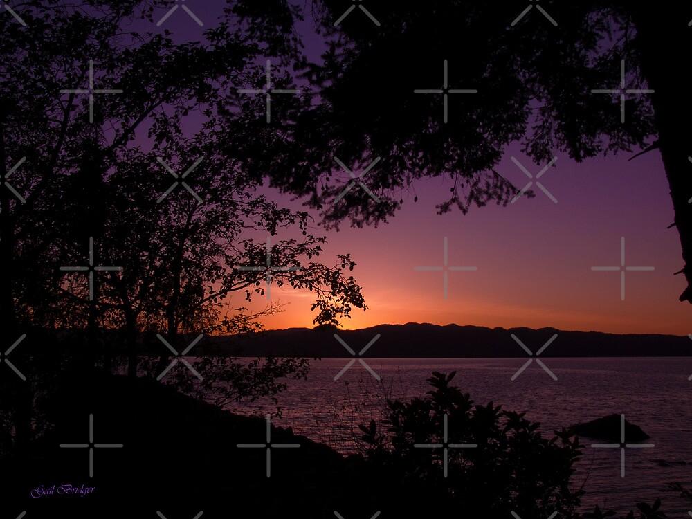 Tonight's Sunset (05/10/10) by Gail Bridger