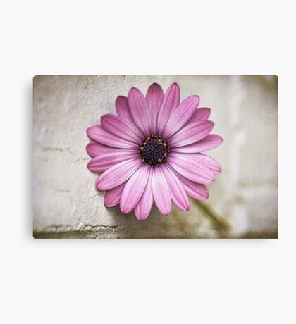 Uncomplicated Canvas Print