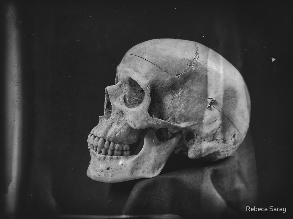 «Skull» de Rebeca Saray