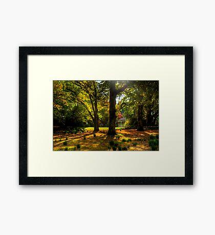 Be It Ever So Humble - Nooroo , Mount Wilson Framed Print