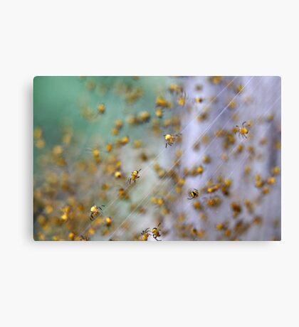Arachno-nursery 1 Canvas Print