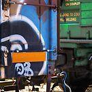 Boxcar graffitti by Alana Ranney
