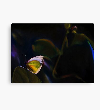Beauty Out of Darkness Canvas Print