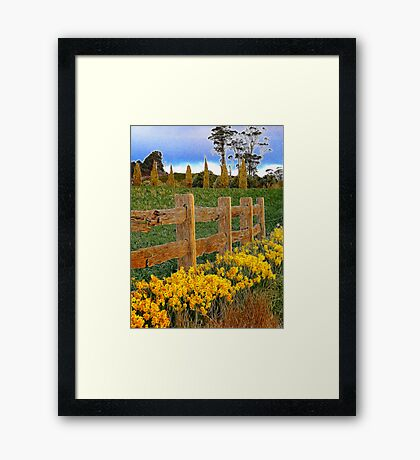 Springing into spring Framed Print