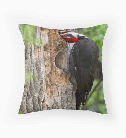 Anything for a meal Throw Pillow