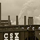 Cleveland CityScape 2010-20 by Bob  Perkoski