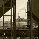 Cleveland CityScape 2010-21 by Bob  Perkoski