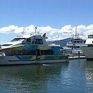 More boats at Nadi, Fiji by Camelot