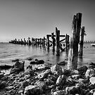 Return of the Jetty by Joel Hall