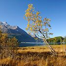 Autumn in the Engadin by Erwin G. Kotzab