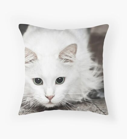 It is sooo ON Throw Pillow