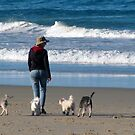 dog beach 10 by Zefira