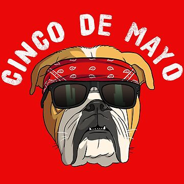 Cinco de Mayo English Bulldog Cholo by Nosek1ng
