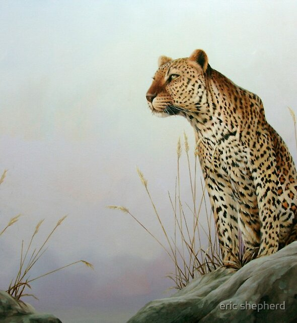 A Leopards Tail by eric shepherd