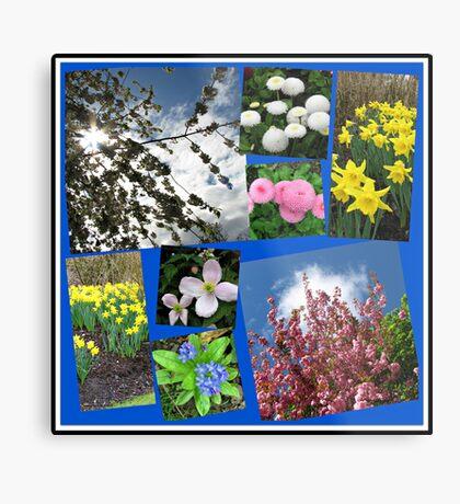 Glories of Spring Collage Metallbild
