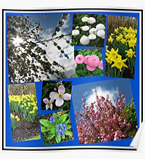 Glories of Spring Collage Poster