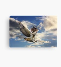 I Can Fly Canvas Print