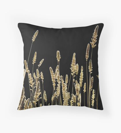 Sunlight And Shadow Throw Pillow