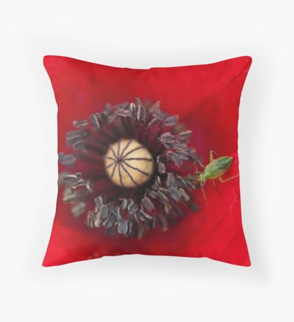 A Guest Throw Pillow