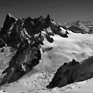 In the High Alps by John Gaffen