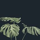 Monstera love 09 by youdesignme