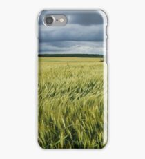 Wind iPhone Case/Skin