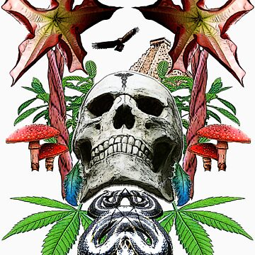 DMT Skull by Randle