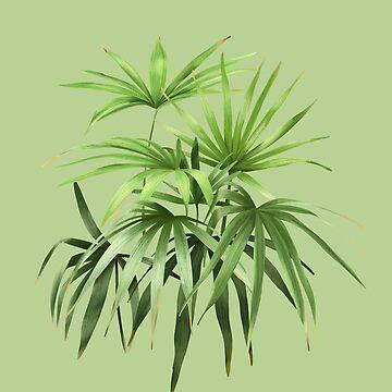 Palmen 01 von youdesignme
