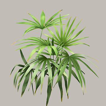 Palmen 02 von youdesignme