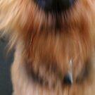 Smooch! by copperhead