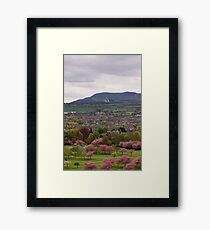 The View South Framed Print