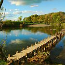 Walk way on the Lune River by photoshotgun