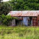 Old Rusty Building by Rosalie Scanlon