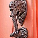 Knock! by Alex Preiss