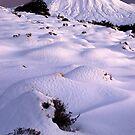 Pre dawn on Mount Ngaruhoe by Paul Mercer
