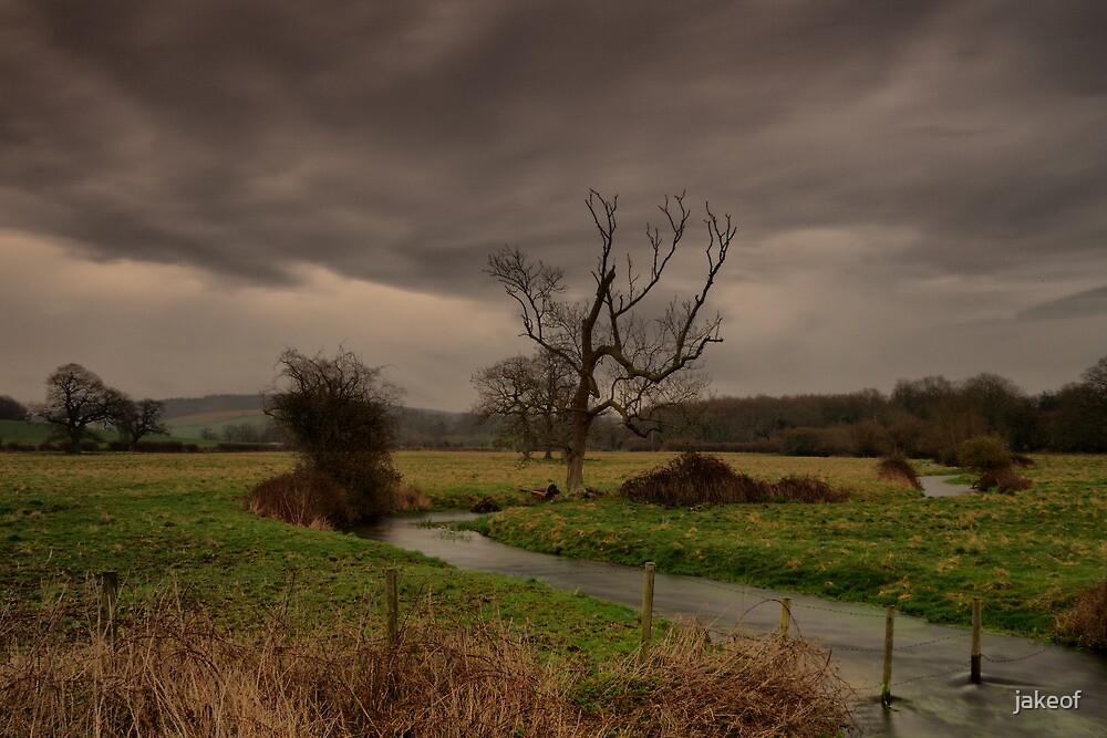 Rainy Days And Mondays by jakeof