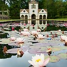 Bodnant Gardens, Lily Lake by JohnYoung