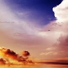 Enveloping Skies. by TwistedHearts