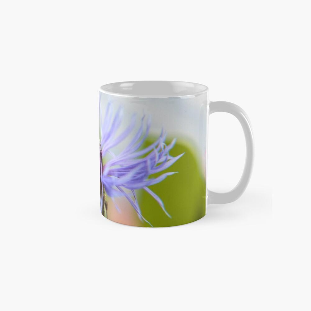 Blüte einer Kornblume Tassen