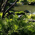 Vivid Green Ferns by Georgia Mizuleva