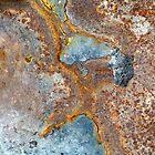 Reef Illusions II by Kathie Nichols
